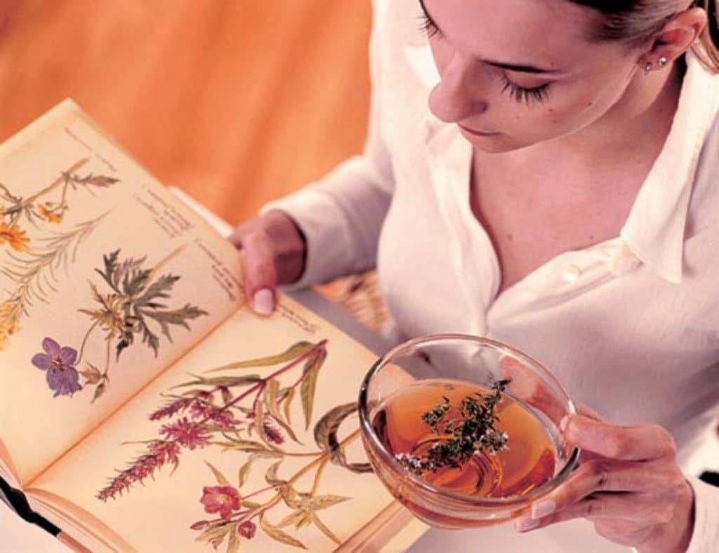 Лечение онкологии травами