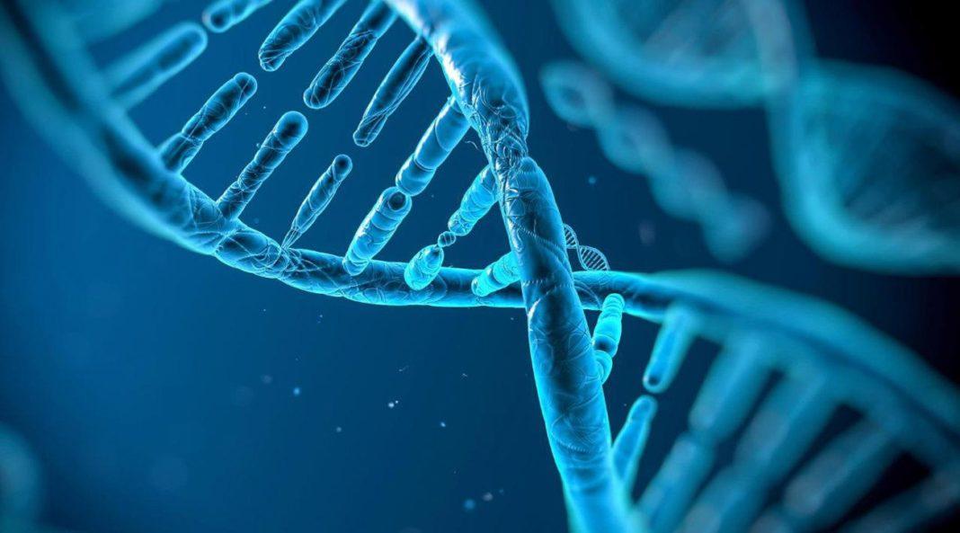 Теория о влиянии генов на развитие рака опровергнута