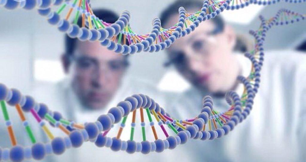 Гены-супрессоры PTEN в борьбе против роста опухоли
