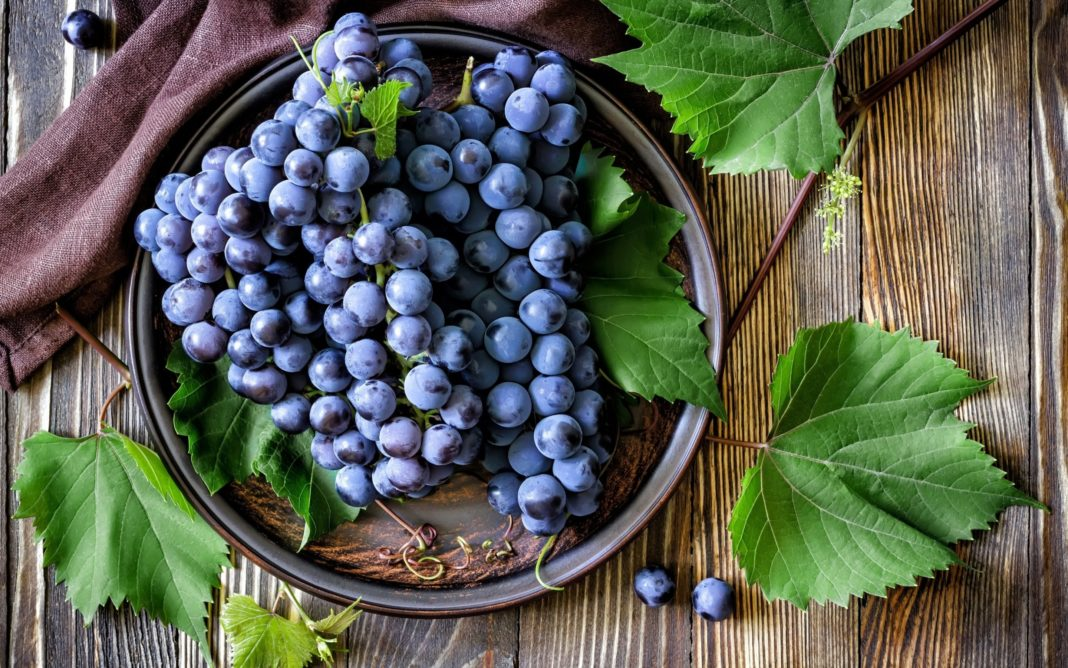 Полезные свойства виноградной кожуры в борьбе против рака