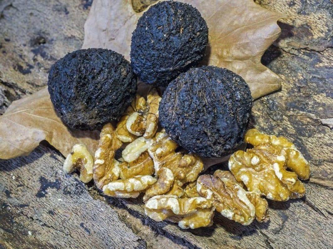 Орехи от рака