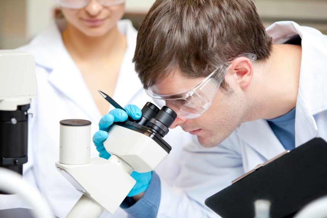 Рак можно лечить композитом из водорослей и золота