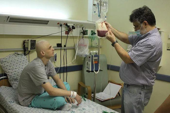 Проведение трансплантации костного мозга
